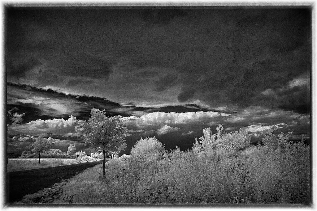 Schwarz-Weiß-Fotografie – Slowfoto\'s Blog