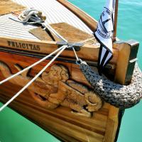 Bodenseefahrt mit dem Dampfboot Felicitas