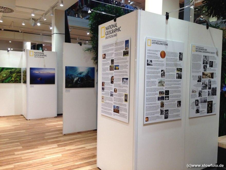 aktuelle Ausstellung im 1.OG