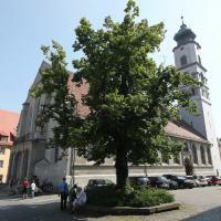 Lindau, Wasserburg und Nonnenhorn zu Fuss