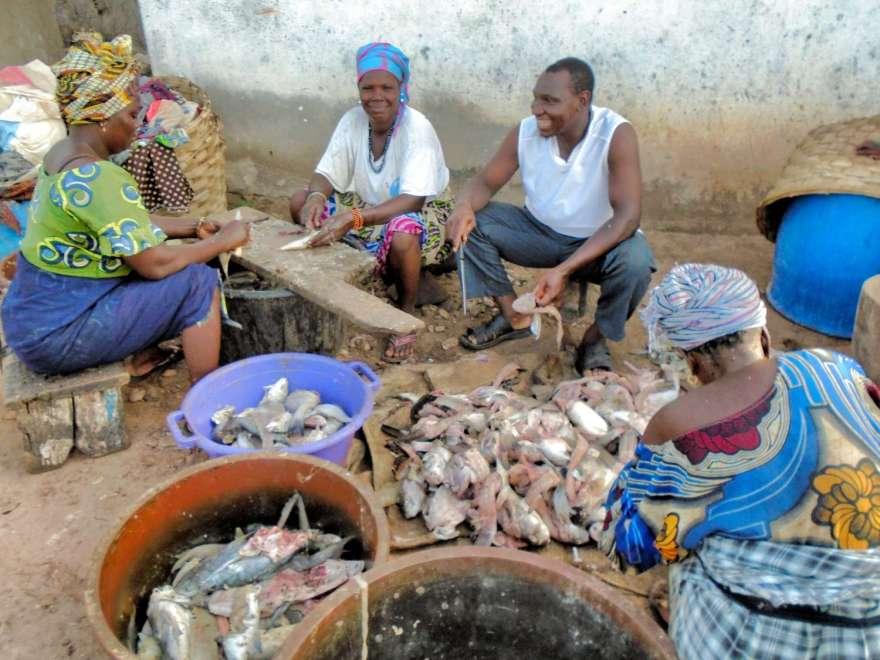 Gambia - Fischmarkt in Bakau Detail