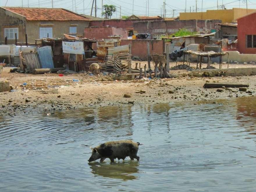 Senegal - Joel Fadiuot - Wasser