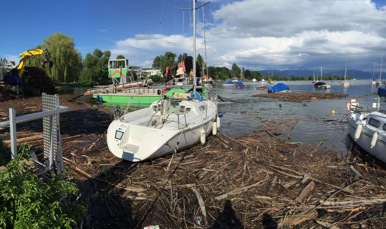 was das grüne Boot eingesammelt hat