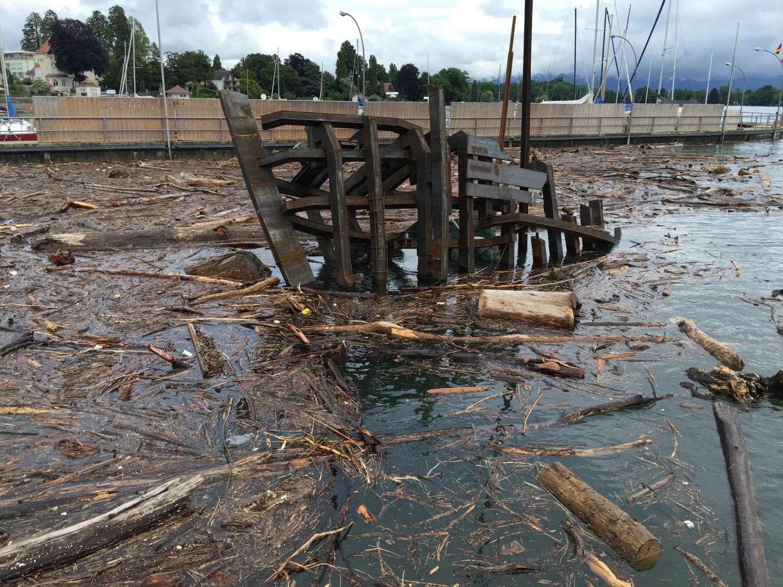 in der Holzflut