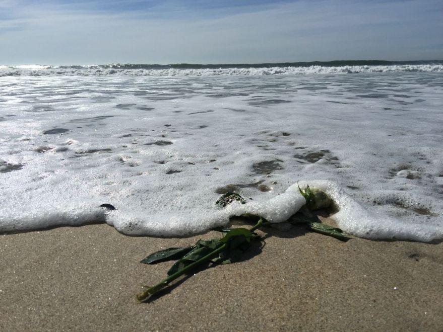 weiße Rose einer Meerbestattung